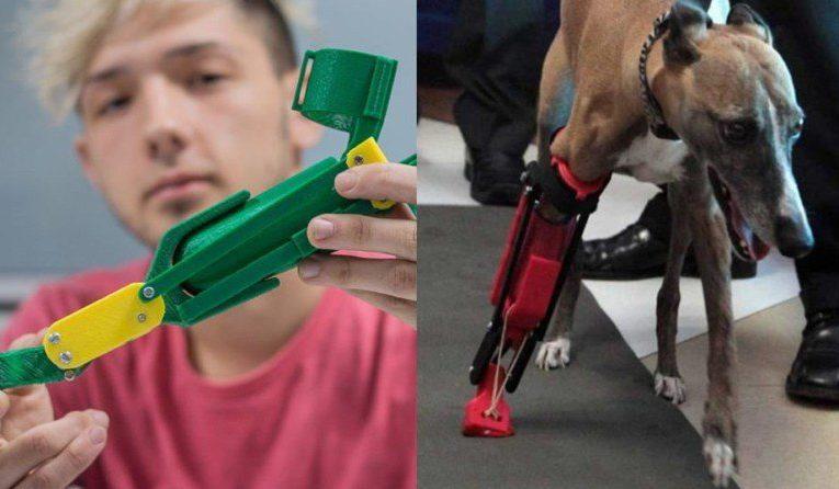 Joven estudiante de ingeniería crea prótesis 3D para mascotas