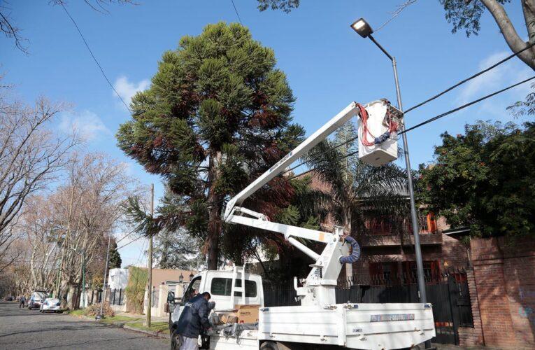 El Municipio potencia los operativos de poda de seguridad y la instalación de luces Led.